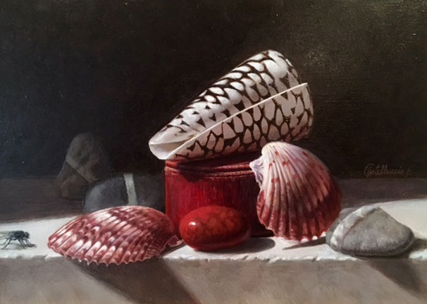 """Shells & Company"" completed"