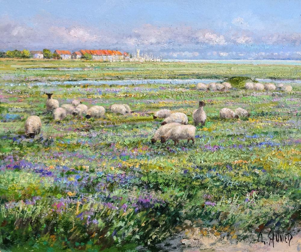 Moutons en Baie de Somme, 22 x 18 in.