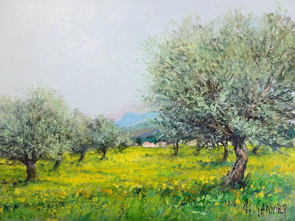 Oliviers en Provence, 13 x 10 in.