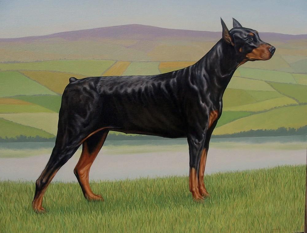 dogs004.JPG