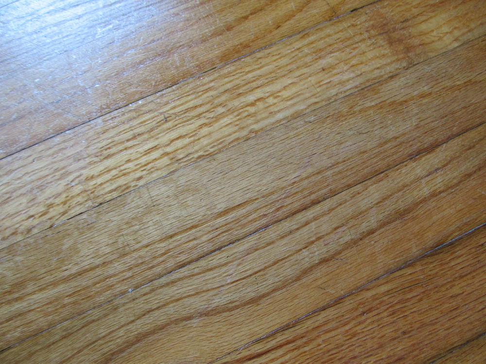 Clean Scratches On Hardwood Floors Using Mayonnaise Frugal Debt