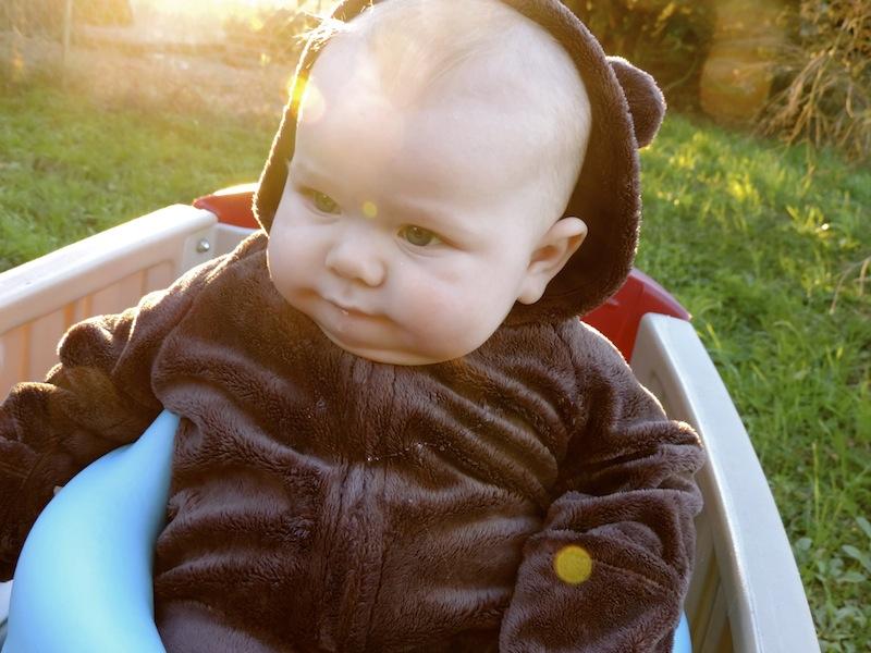 Baby isaac edit in bear suit.JPG