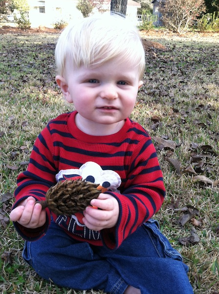 Ryals with a pinecone.jpg