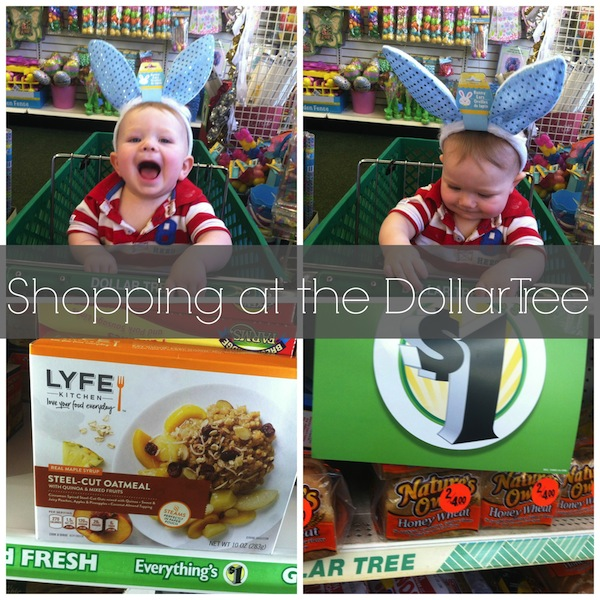 Dollar Tree Store Locator Inc: Great Finds While Shopping At The Dollar Tree