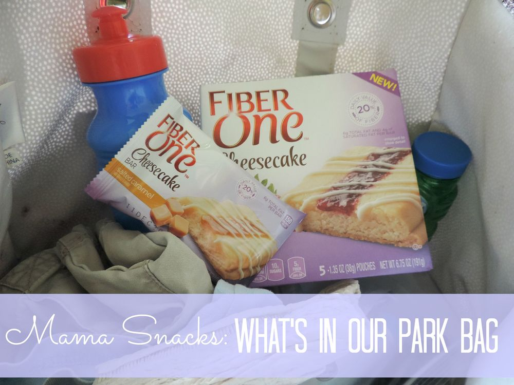What's in our park bag.jpg