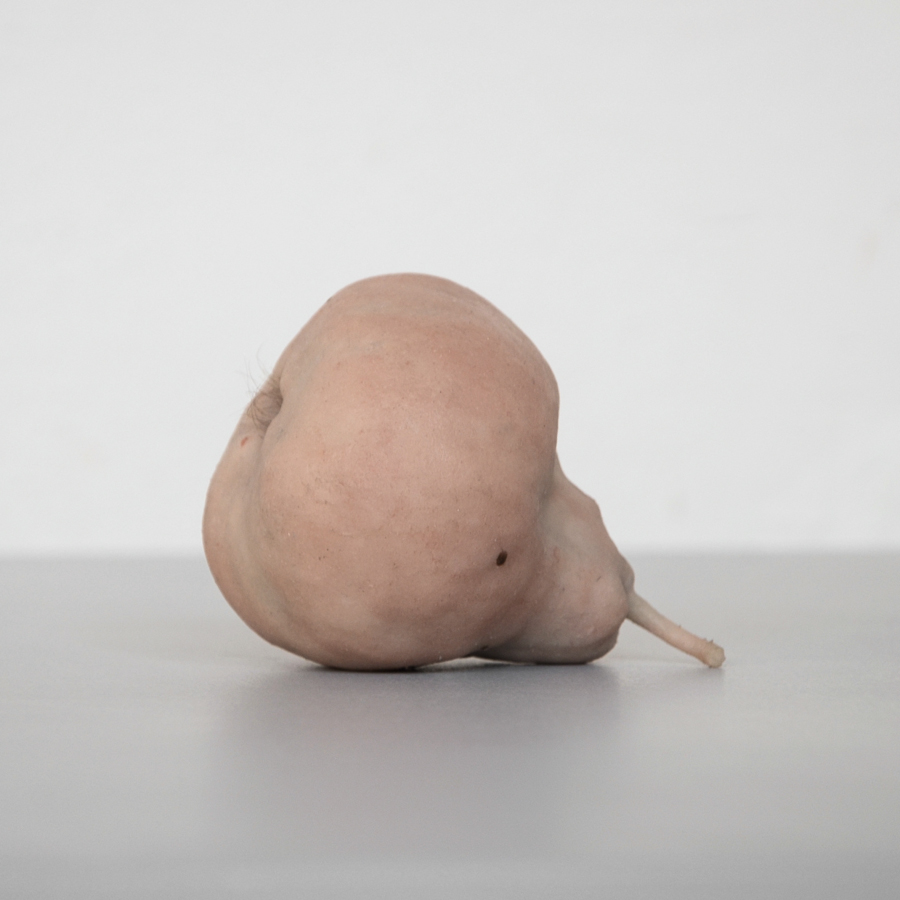 The Pears , toned silicone, plaster, human hair, 2013 @Dušan Váňa