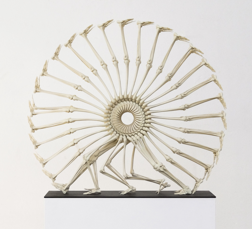 Wheel of Life , 3D print, polyurethane resin, 2012-4 @Monika Horčicová