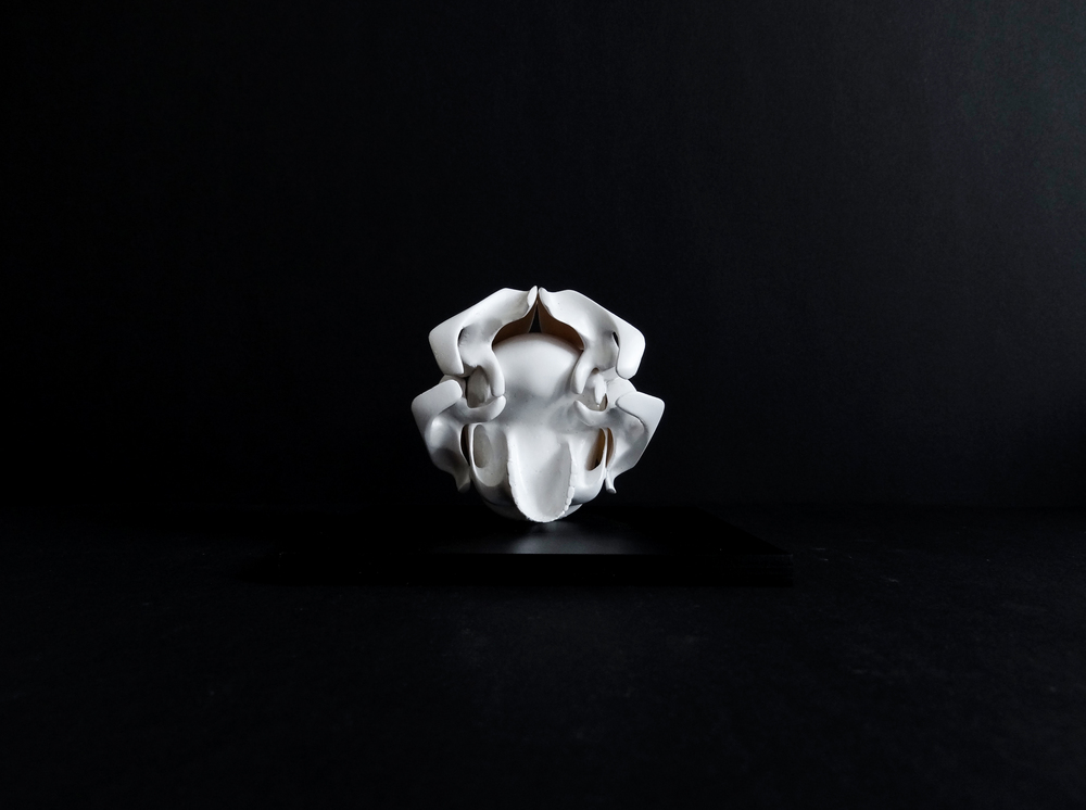 Skull No.2, 3D print,polyurethan resin,2015 @Monika Horčicová
