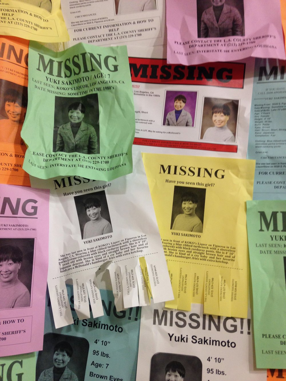 Yuki Missing Person Flyers, 2016