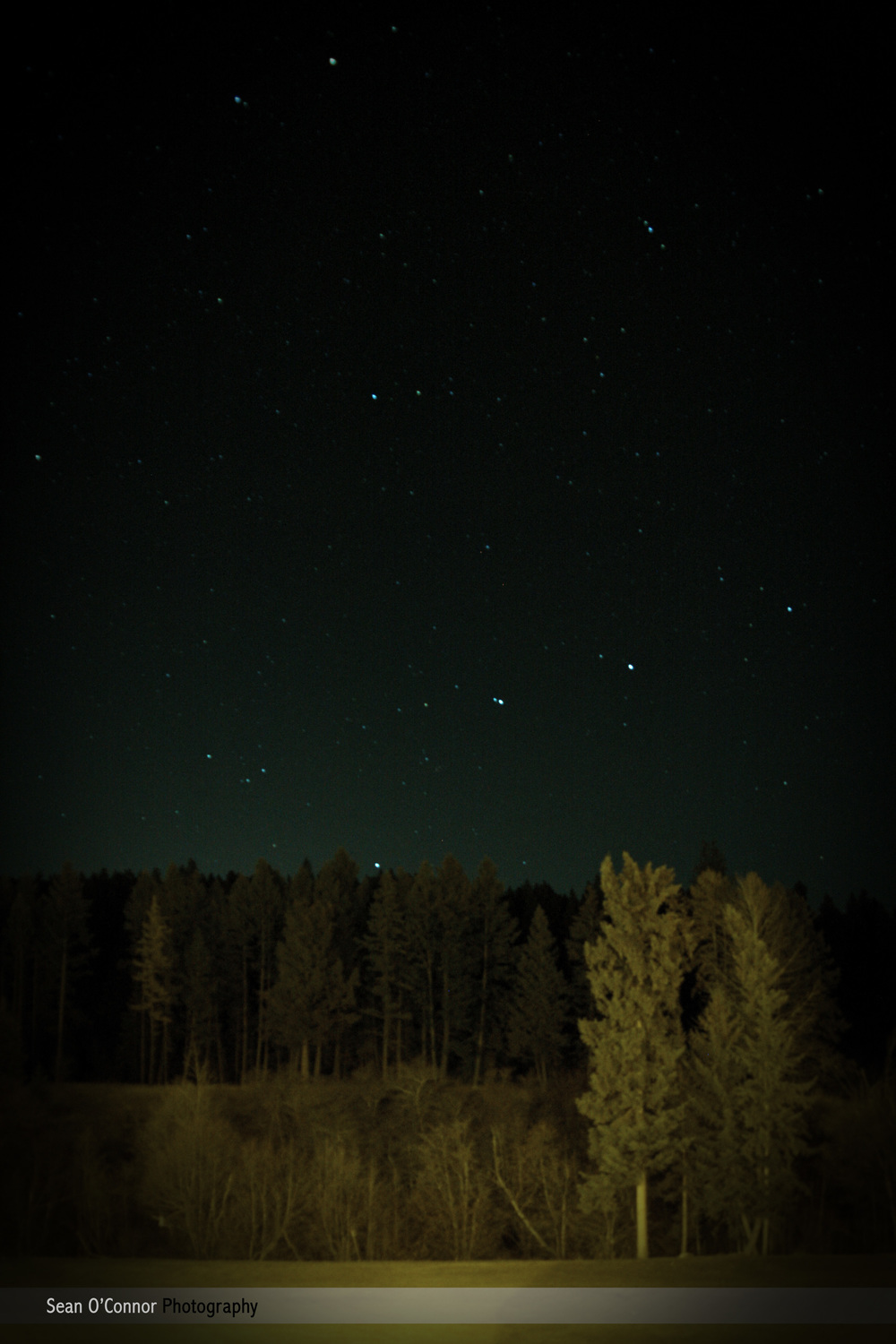 Night with Stars.jpg