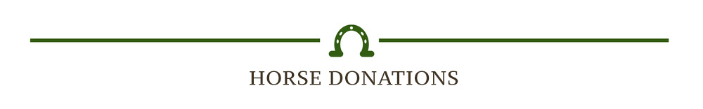 Horse Donations — Endeavor Therapeutic Horsemanship