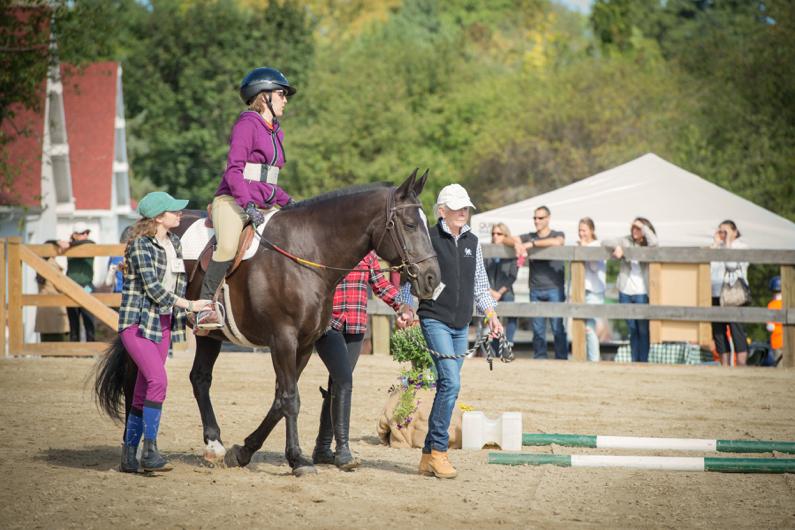Horse Show_Grace.png