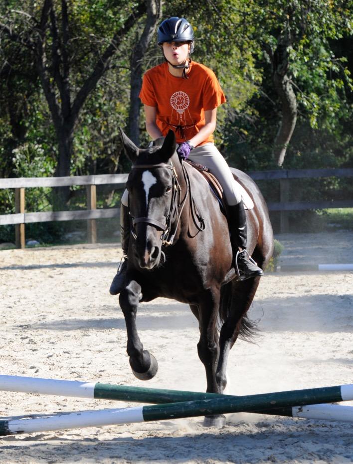 Endeavor Horse Show 2016-148-2.jpeg