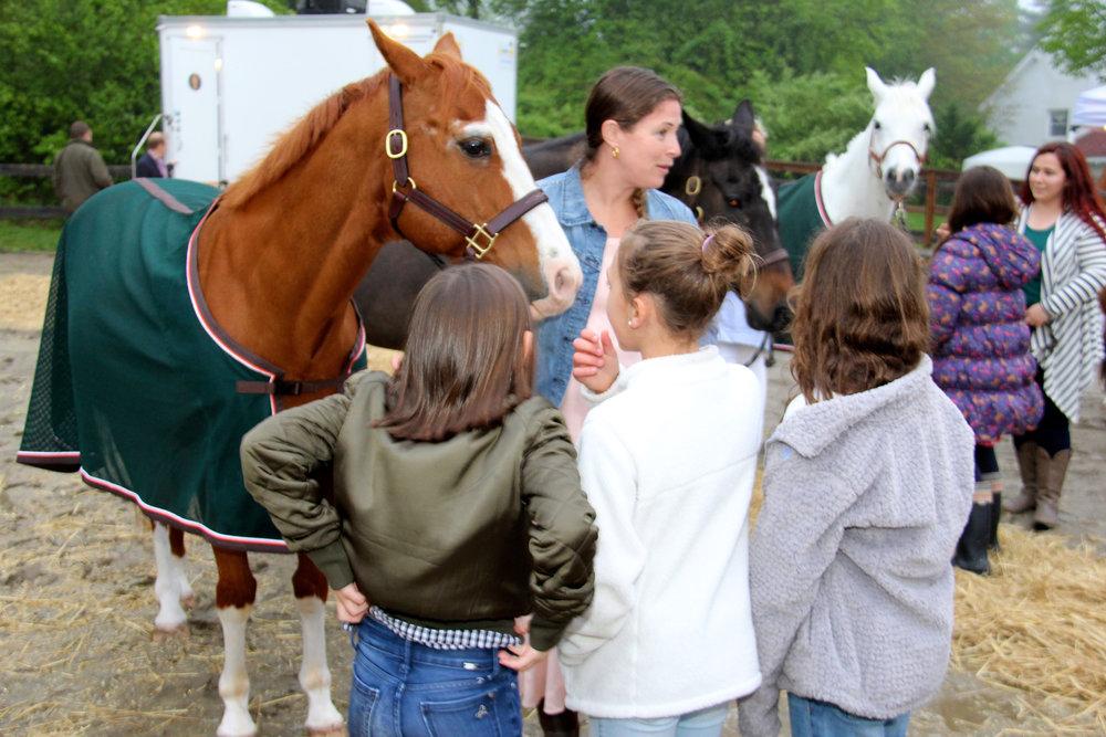 Horse Party  00082.jpg