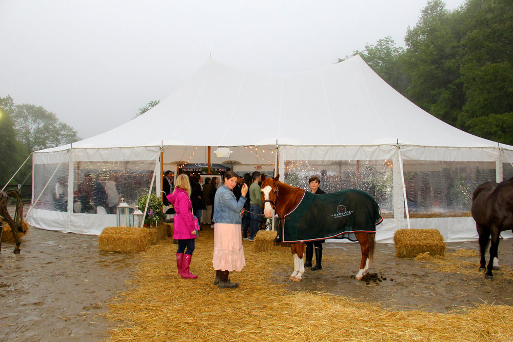 Horse Party  00088.jpg