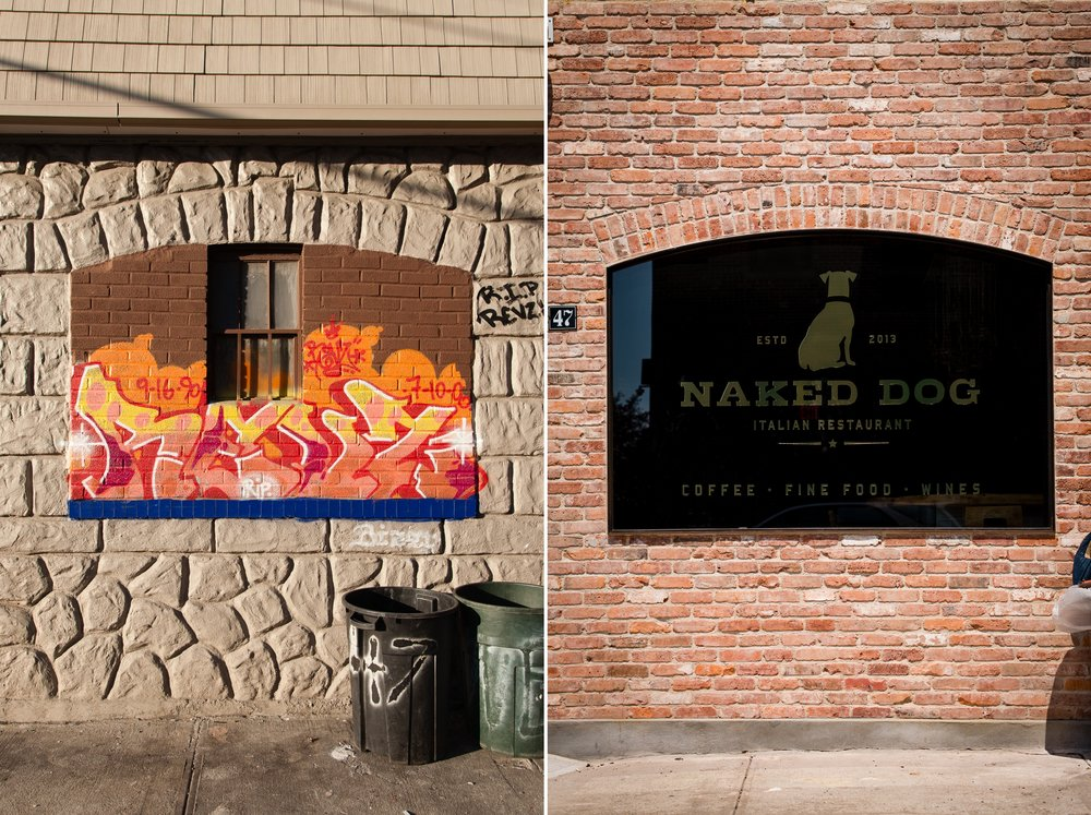 Naked Dog, Greenpoint, Brooklyn 2009, 2015