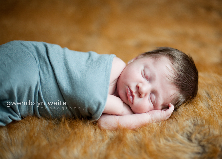 minneapolis-newborn-photography