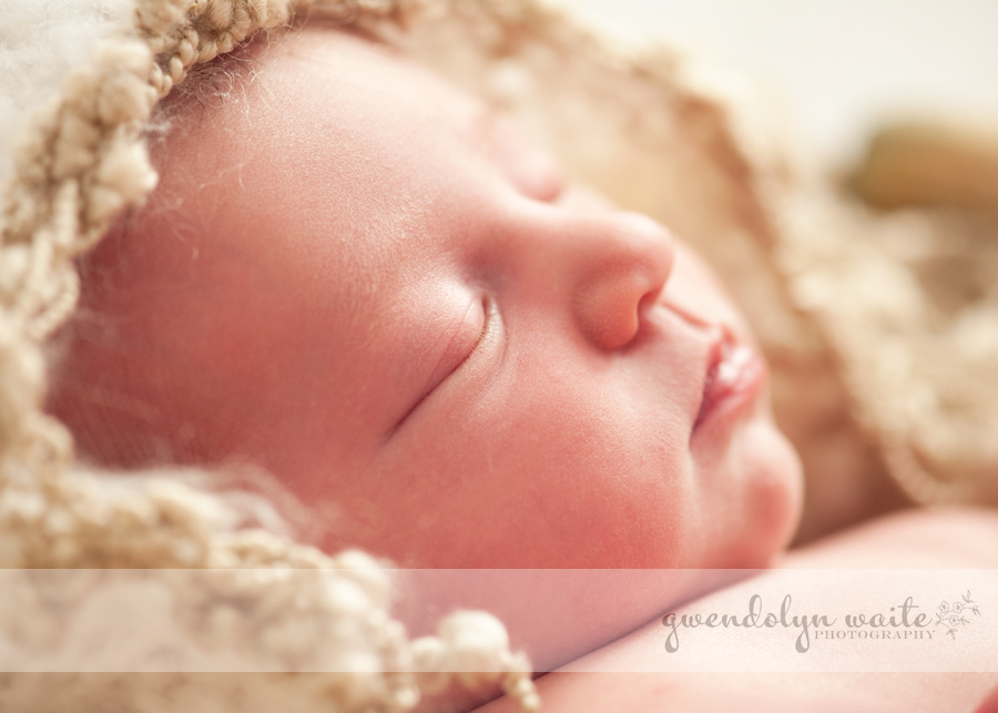 minnetonka baby photographer