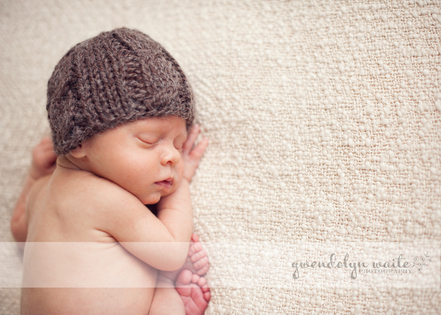 minneapolis studio photographer newborn