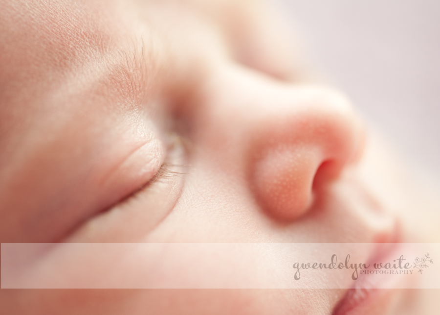 twin cities infant photographer