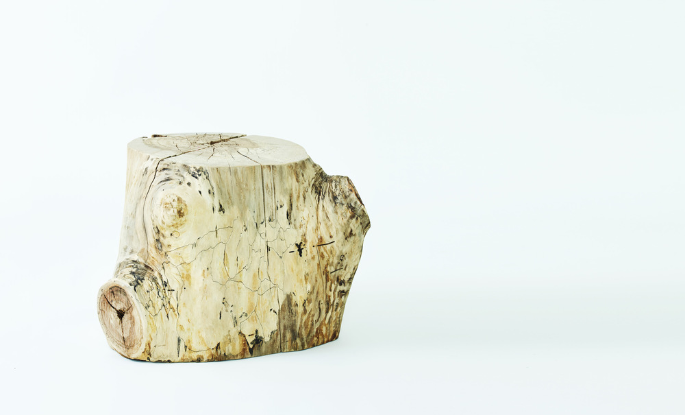 Hudson-Stump-02-01_crop.jpg