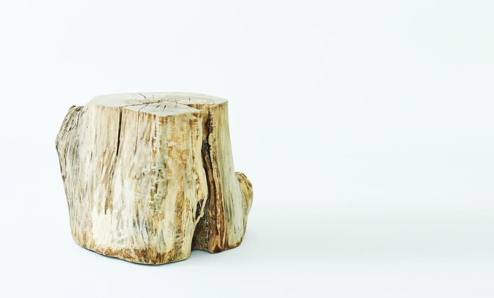 Hudson-Stump-02-02_crop.jpg