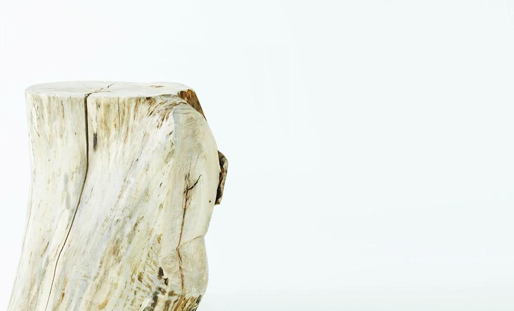 Simplicity + Sophistication.<h3>The Stump</h3>