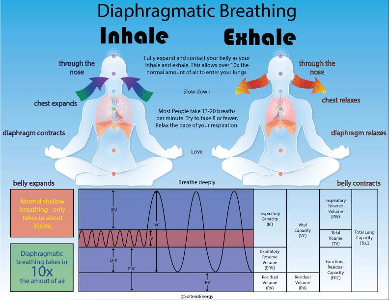 Diaphragmatic-Breathing.png