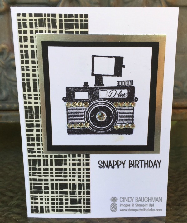 Snappy Birthday card  - www.stampedwithaloha.com