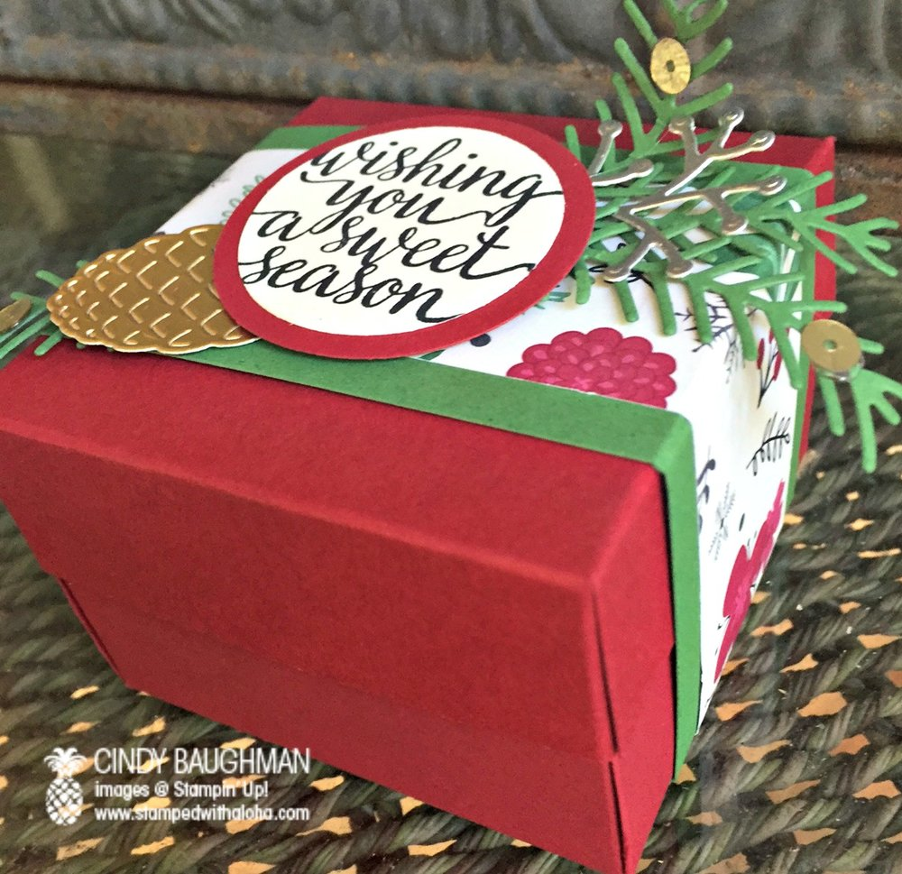 Candy Cane Christmas Pine Bough Box - www.stampedwithaloha.com