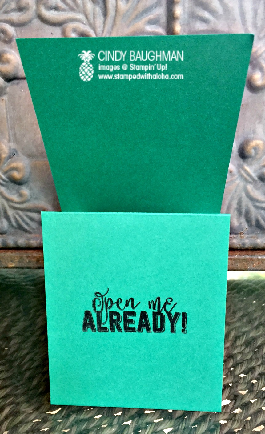 Gift Card Holder (inside) - www.stampedwithaloha.com