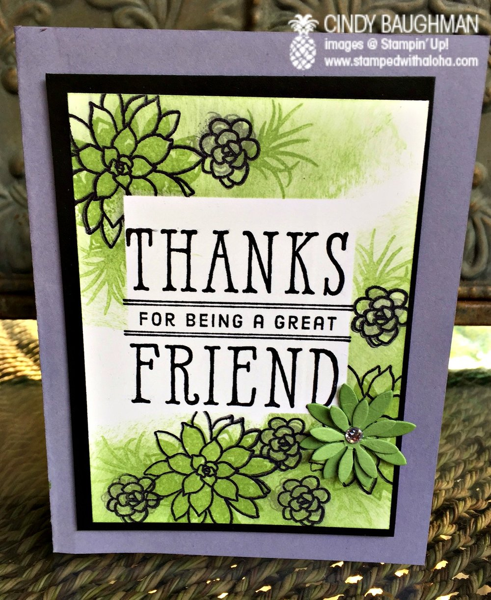 Oh So Succulent Card - www.stampedwithaloha.com