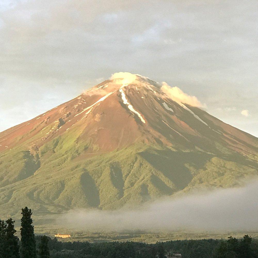 Mr. Fuji