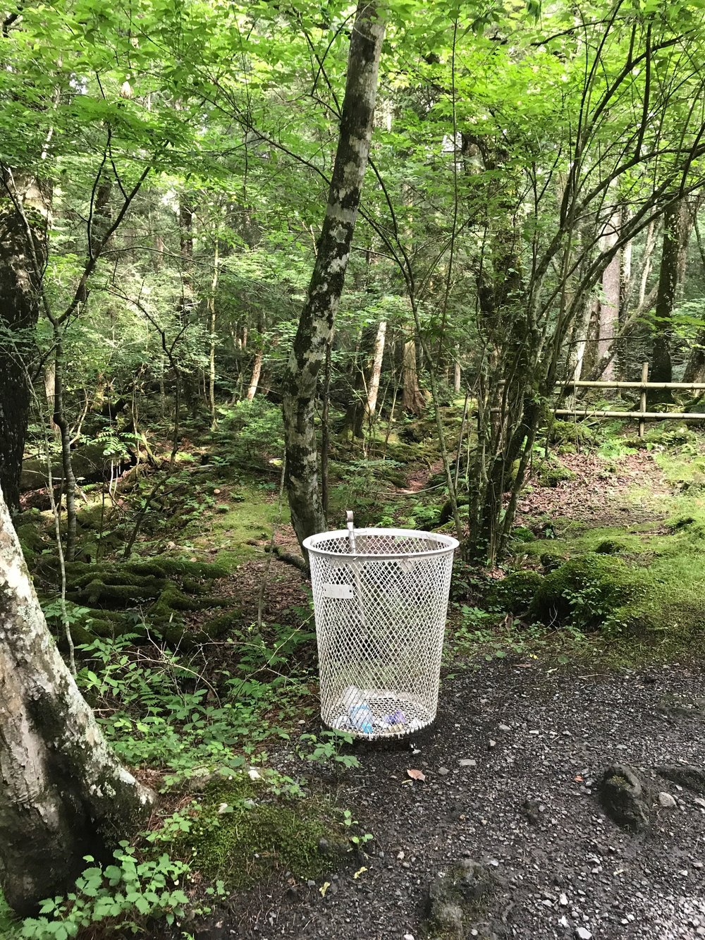 Trash can in the forest, a rare sight in Japan!