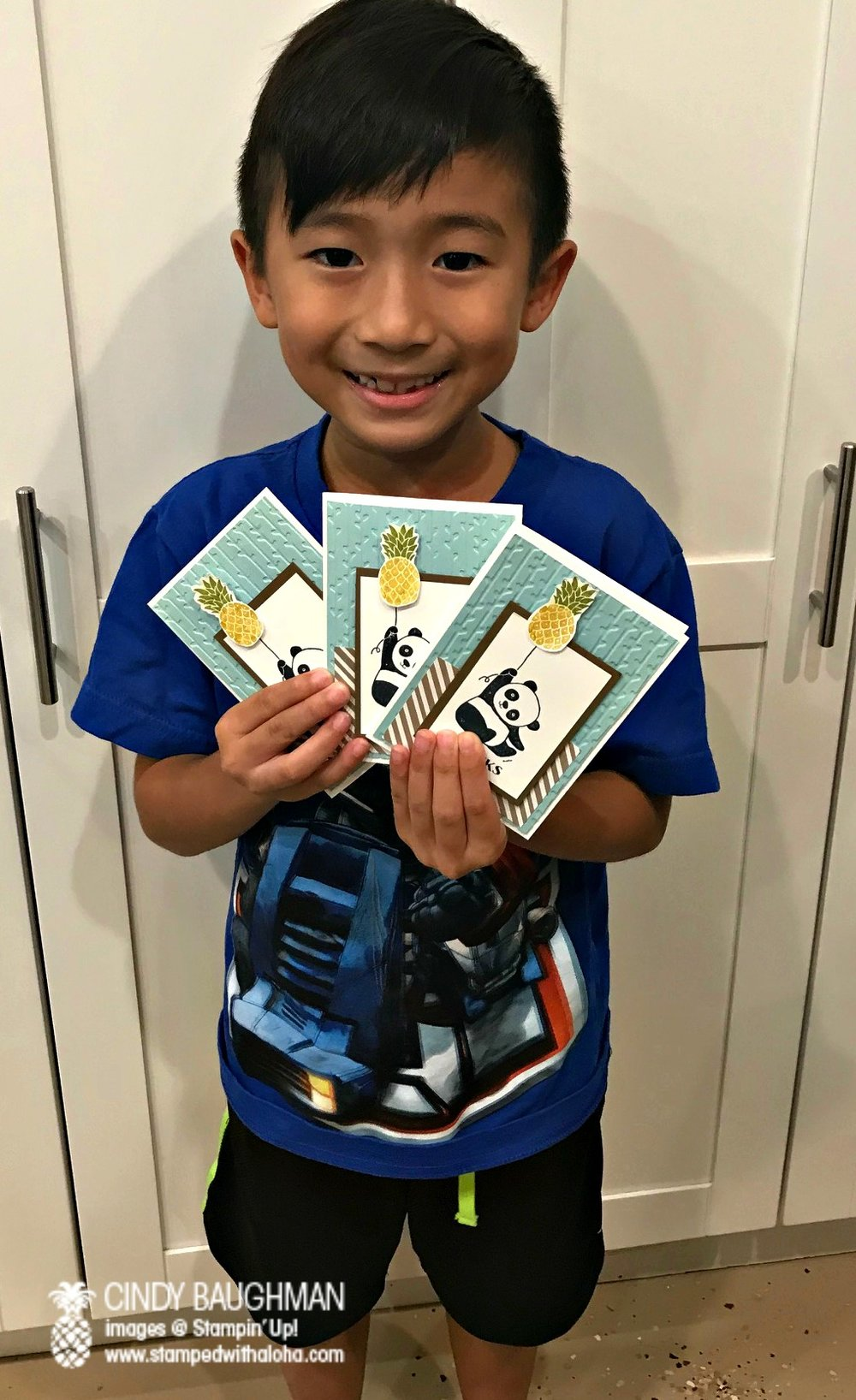 Noah and his panda cards