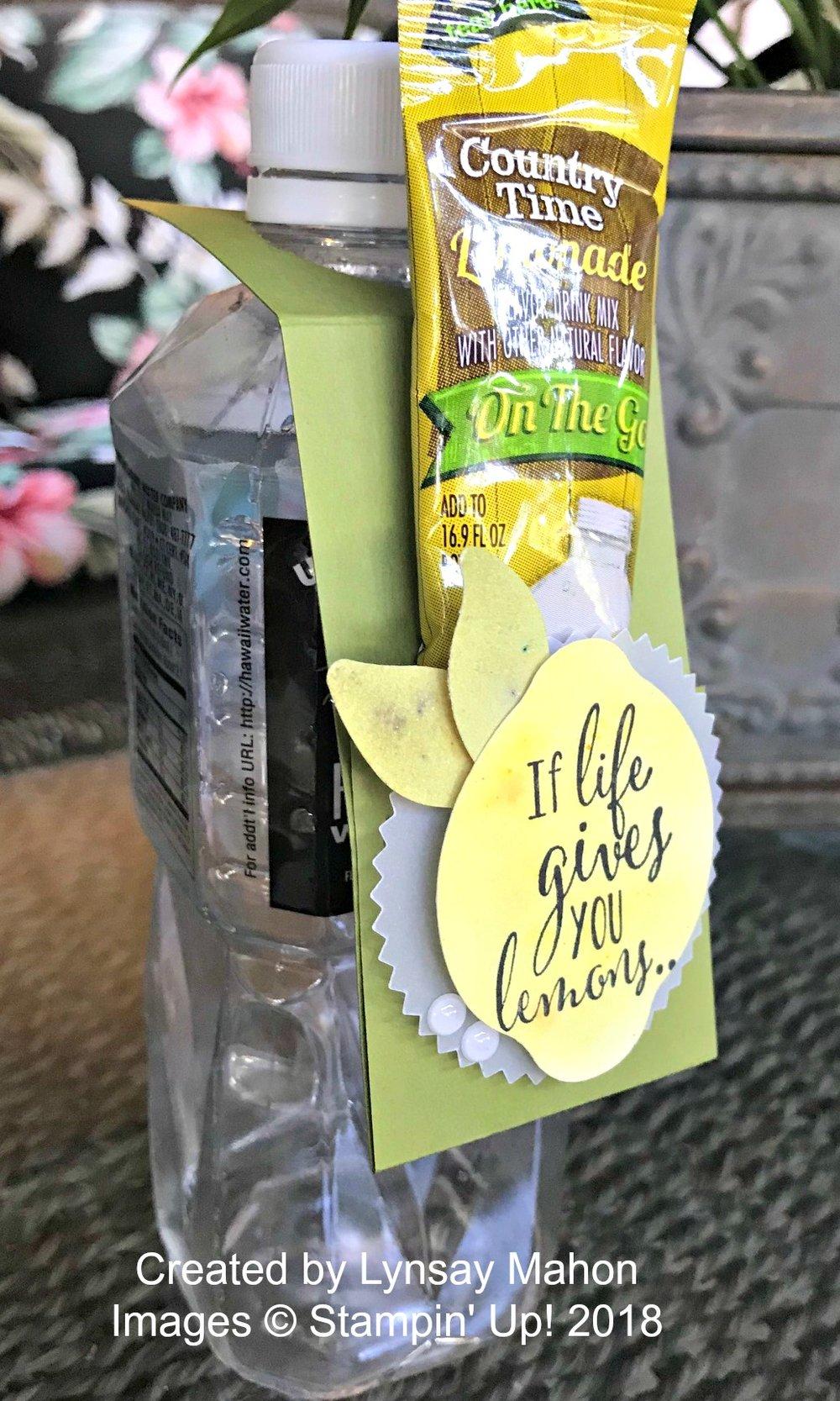 Lemon Zest Project - www.stampedwithaloha.com