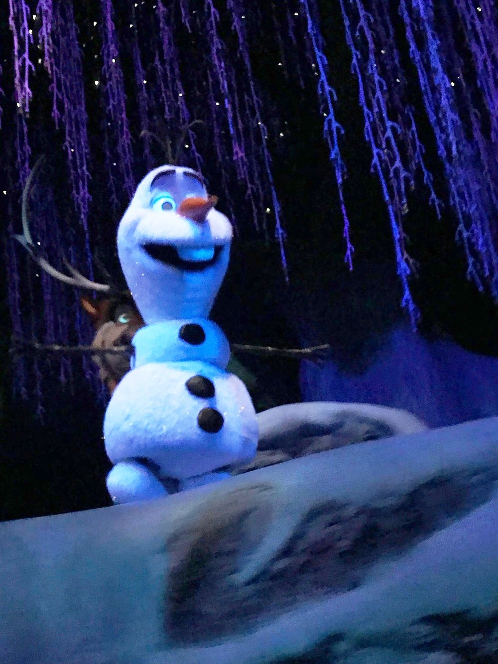 Frozen Ride at Epcot