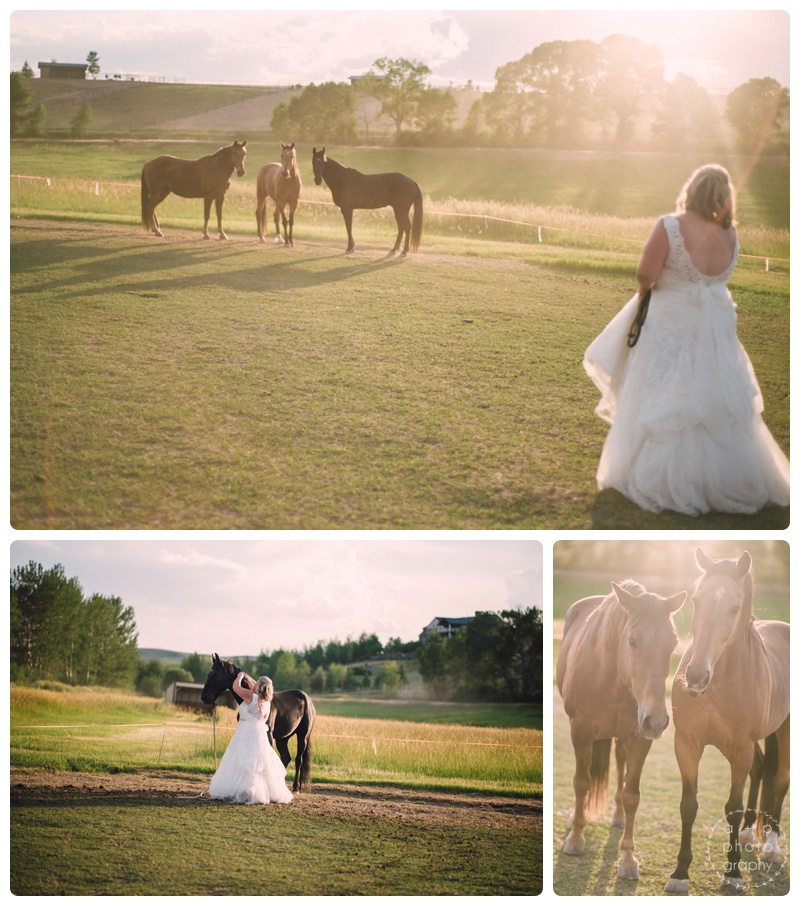 Nothing like wrangling your horses in your wedding dress...Bridget was so cool. Wasn't even phased when one of them ripped some of the tulle (eek!).