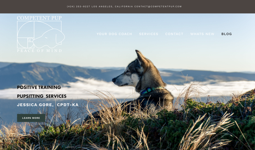 COMPETENT PUP | TRAINING SERVICES   Web-design