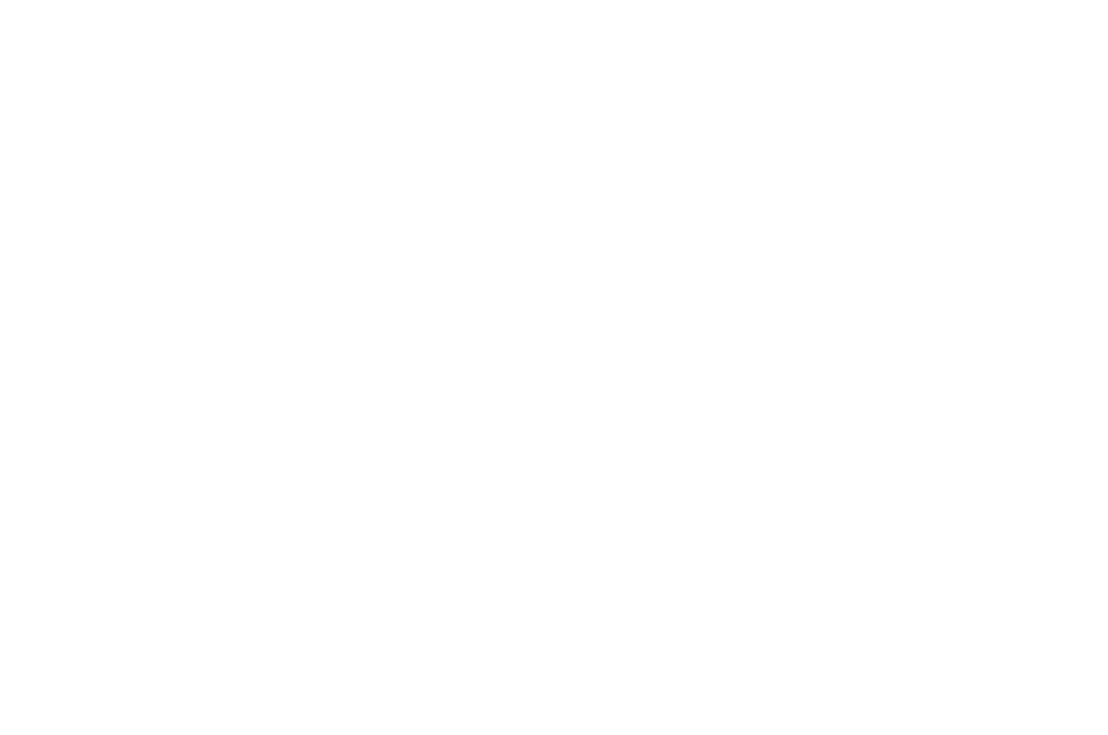 OFFICIAL SELECTION -               HCX                Haiti Film Fest - 2017-1.png