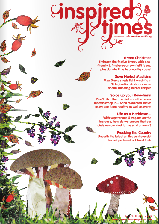 Inspired Times - Autumn 2013  Spice up your raw tum. Raw food for winter.