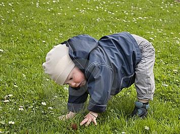 baby-learning-to-walk-.jpg