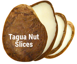 Tagua-slices-11.jpg