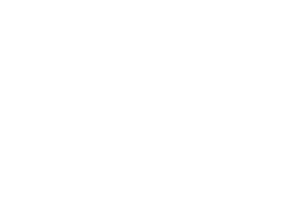 Greater Bean Roaster