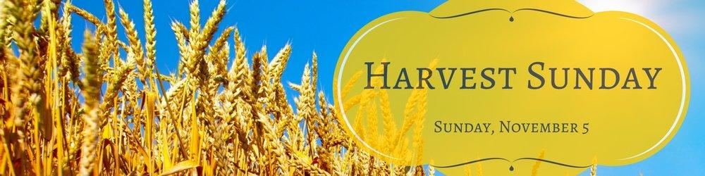 Harvest Sunday Web Banner Sunday, November 6.jpg