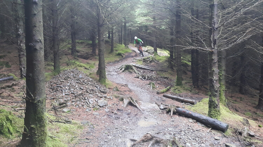 Typical trail, with lots of very wet puddles.