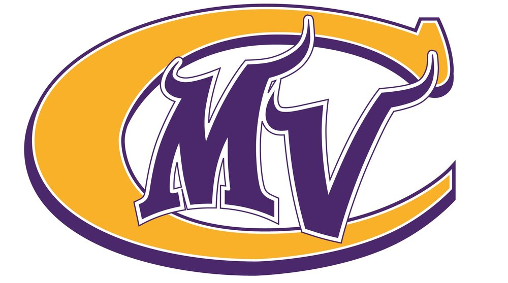 vikings cheerleader logo to use.jpg