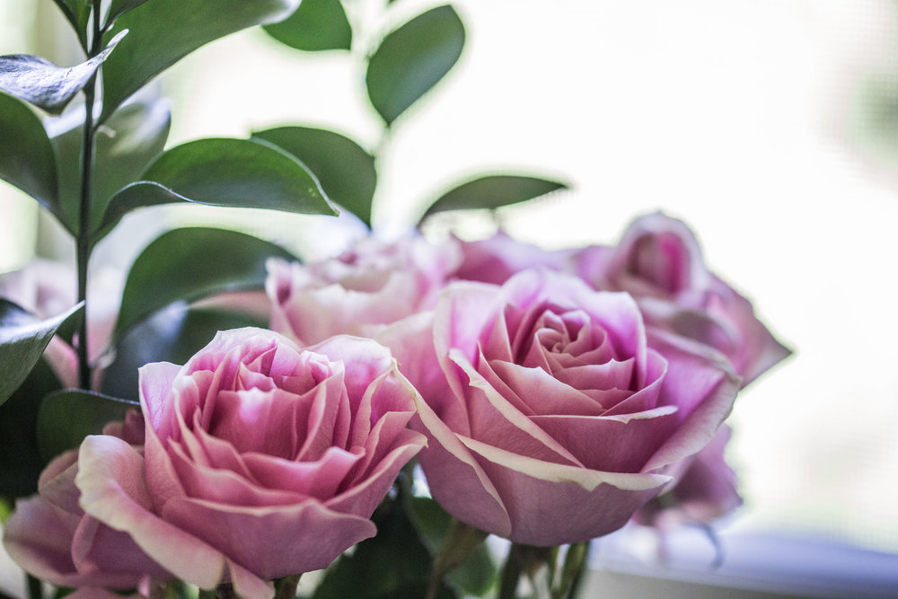 moms flowers-13.jpg