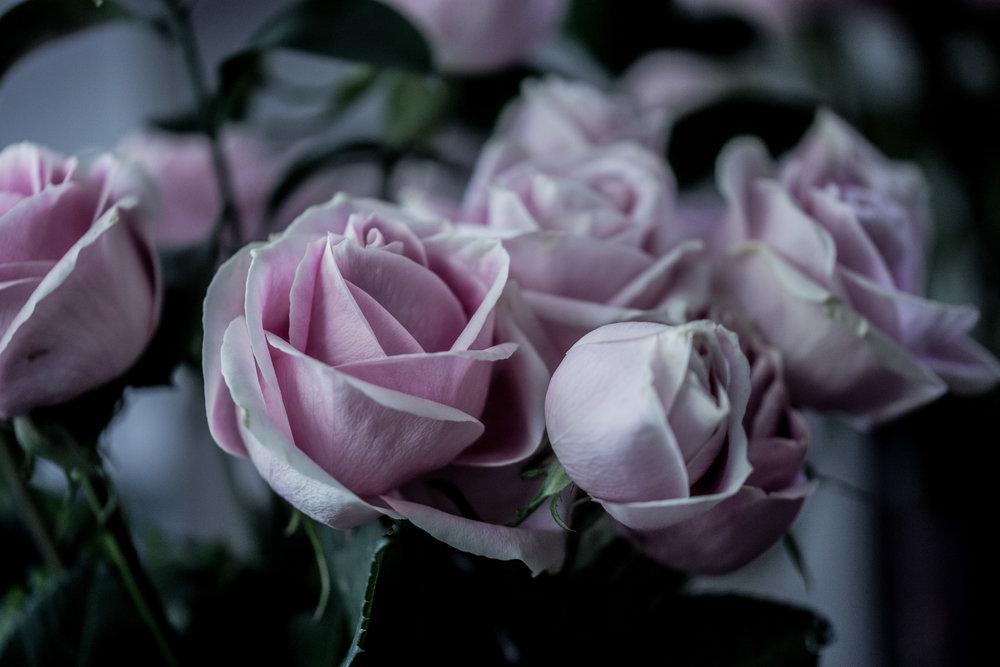 moms flowers-39.jpg