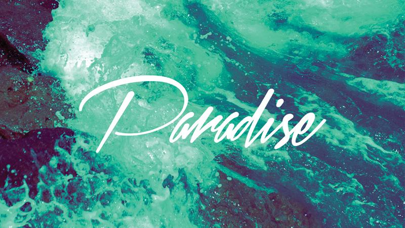 paradise.jpeg